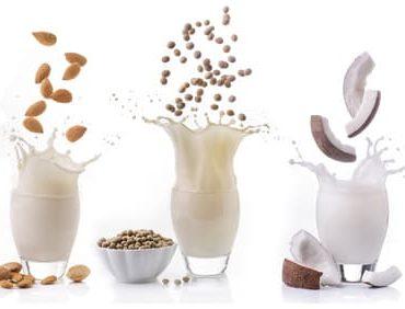 Fettarme Pflanzenmilch – Einkaufstipps