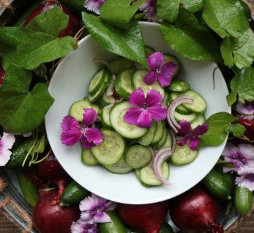Gurkensalat mit Minze