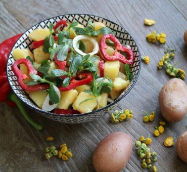 Kartoffelsalat mit Paprika & Portulak